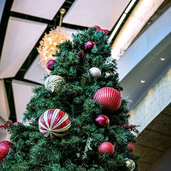 Gallery-Holiday-Party-Thumb.jpg